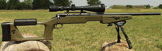 sniper rifle savage 10fp / 110fp